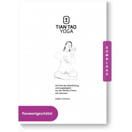 Tian Tao Yoga Aufbau 3 Seminar Handout PDF